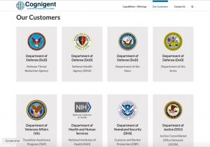 government contractor website design example