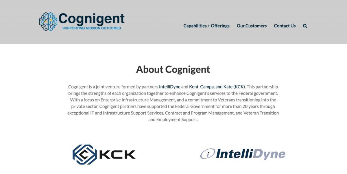 government contractor website design screenshot
